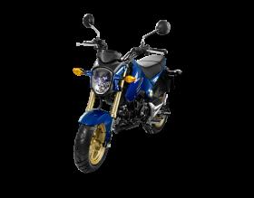 honda msx 125cc - xanh đen